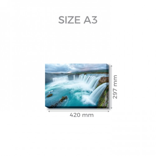 A3 (29.7cm x 42.0cm)